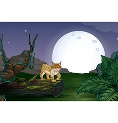 Lynx and forest vector image