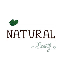 natural quality handwritten logotype vector image vector image