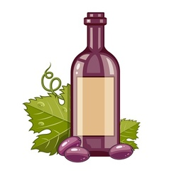 Red wine bottle with grapes vector