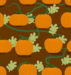 Pumpkin farm seamless patter plantation of vector