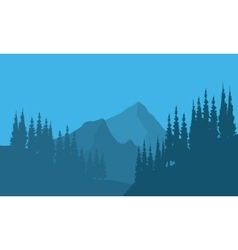 Silhouette of forest fir trees and mountain vector