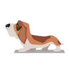 Basset-hound minimalist image vector
