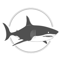 Big shark black and white silhouette i vector image