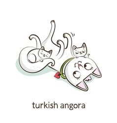 Turkish angora cat character with kittens isolated vector