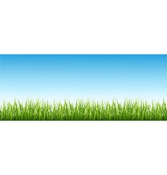 Grass and the sky vector
