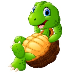 Cute turtle cartoon posing vector