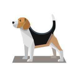 beagle minimalist image vector image vector image