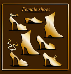 different types of women shoes vector image