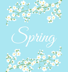 spring flowers on tree branch vector image