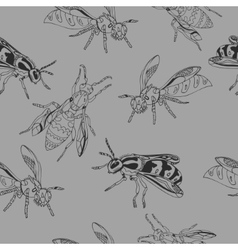 Bee pattern  wasp vector