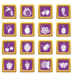 berries icons set purple vector image