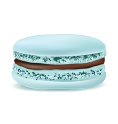 Macaroon on a white background object vector image