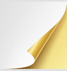 Curled golden metalic corner white paper vector