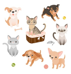 Pets set vector