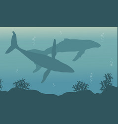 Landscape of whale on ocean silhouettes vector