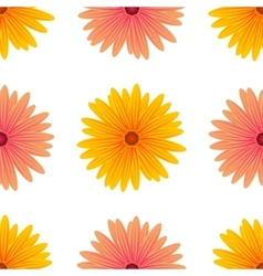 Spring Pink Yellow Flowers Isolated vector image vector image
