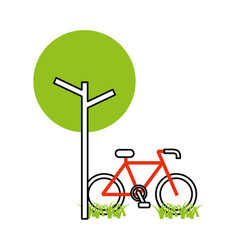 Tree bicycle natural foliage park plant vector