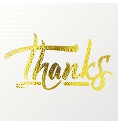 Thanks - calligraphic phrase written in gold vector