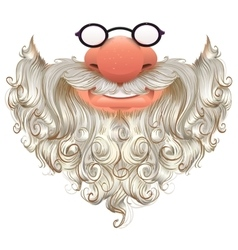 Santa mask White beard glasses and nose vector image vector image