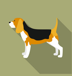 Beagle icon in flat style for web vector