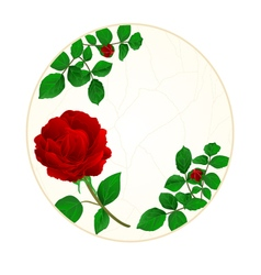 Button circle cracks in the porcelain and rose vector
