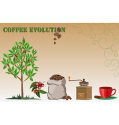 Coffee evolution vector