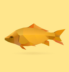 carp vector image