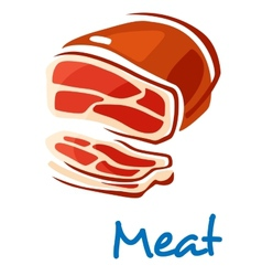Fresh raw meat vector image