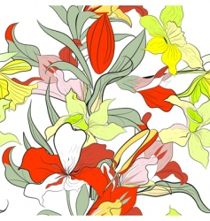 narcissus flowers vector image