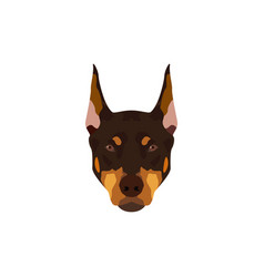Doberman pinscher dog vector