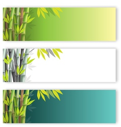 Bamboo flyers set vector