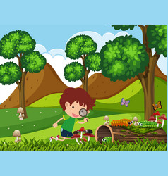 Boy looking at bugs in the park at daytime vector