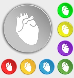 Human heart icon sign Symbol on eight flat buttons vector image