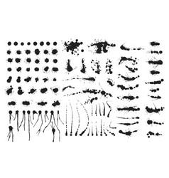 set of ink splashes blots splatter vector image vector image