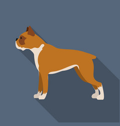 boxer dog icon in flat style for web vector image