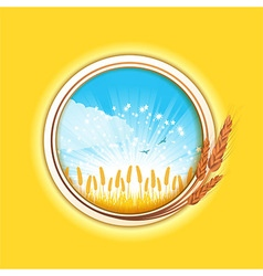 Wheat border and field vector