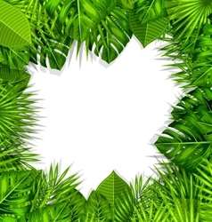 Natural Frame with Green Tropical Leaves vector image