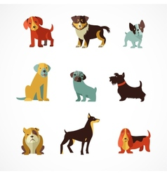 Dogs icons and vector