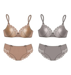 Sexy set of lingerie bra and panties isolated vector