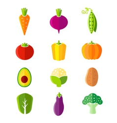 Fresh healthy vegetables flat style organic icons vector image