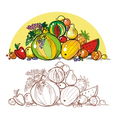 Multicoloured fresh fruit vector