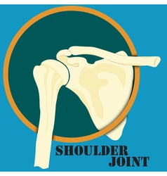 Human shoulder joint vector