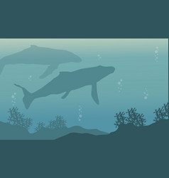 Silhouette landscape of underwater whale vector