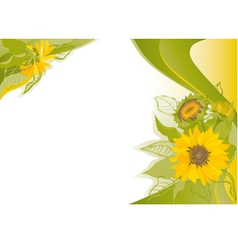 summer background with sunflowers vector image