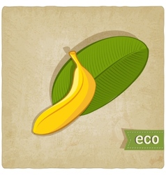 Fruit eco old background vector