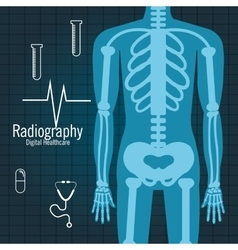 Body radiography isolated icon design vector