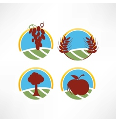 fresh and natural icon vector image vector image