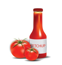 ketchup bottle with tomatoes vector image vector image