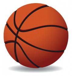 basketballs vector image