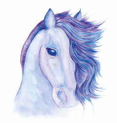 Horse drawn watercolor vector